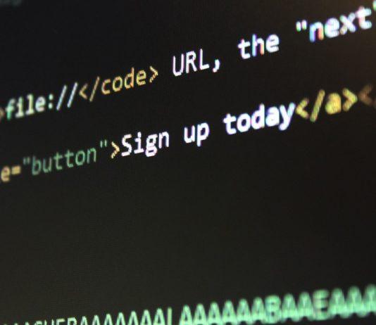 פיתוח אתרים